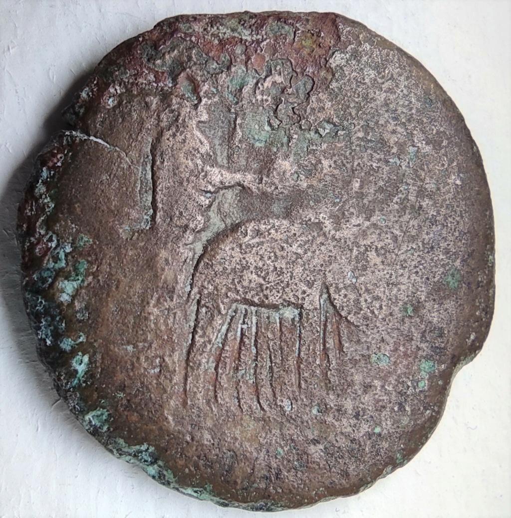 Probablement monnaie provinciale de Trajan, Alexandrie, an 14 du règne, au quadrige d'éléphants Revers19
