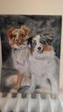 Portraits de vos animaux aux pastels 49500010