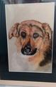 Portraits de vos animaux aux pastels Sans_t16