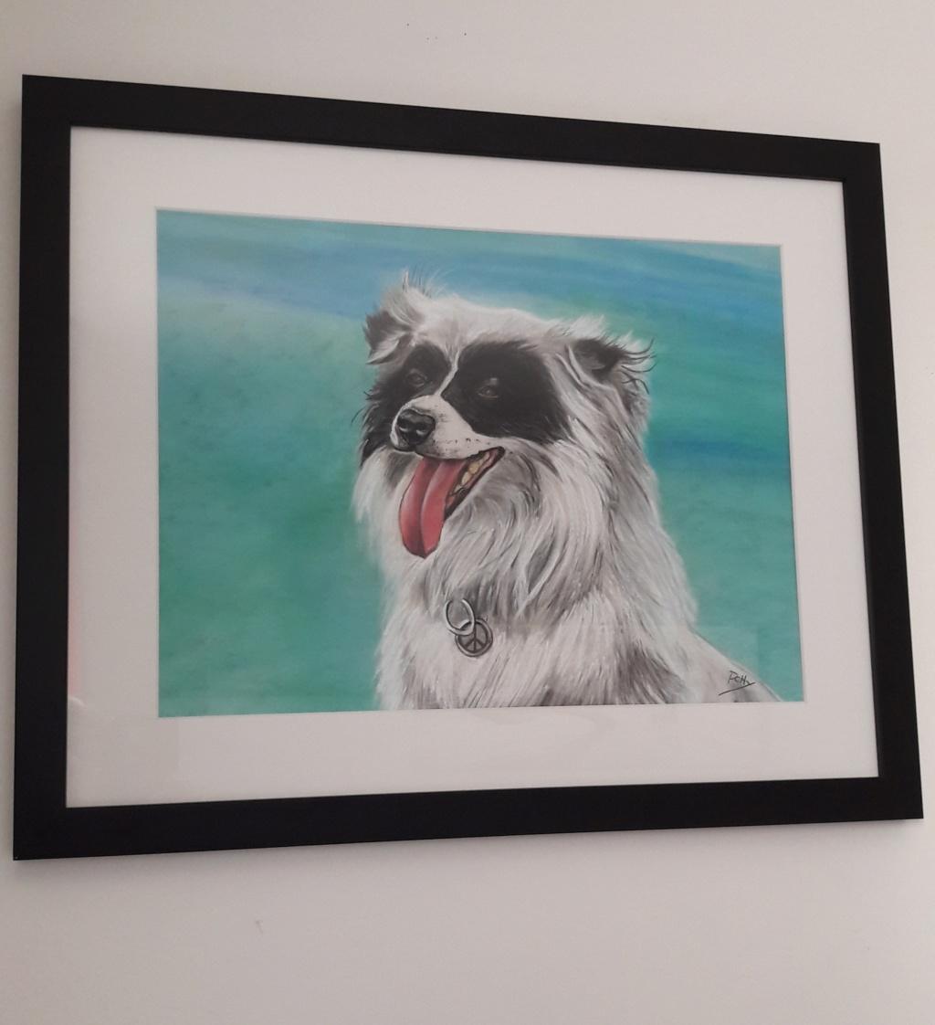 Portraits de vos animaux aux pastels Youky110