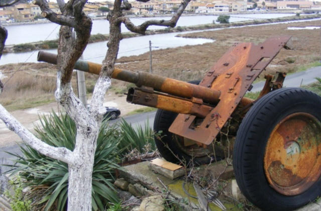 Les canons de Gruissan (R Bosc) à vendre Bosc10