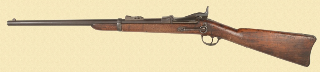 US Cavalry M1873 Trapdoor carbine C3996910