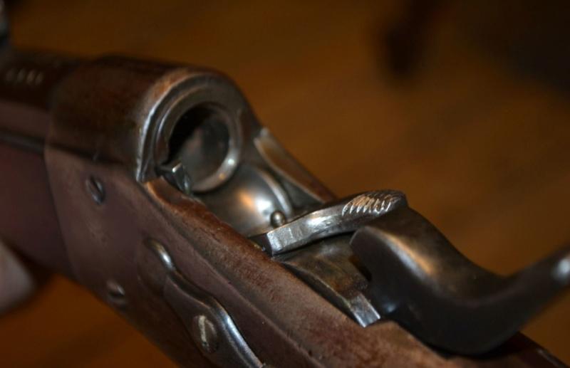 Remington Rolling-Block .43 contrat Egypte Dsc_0112