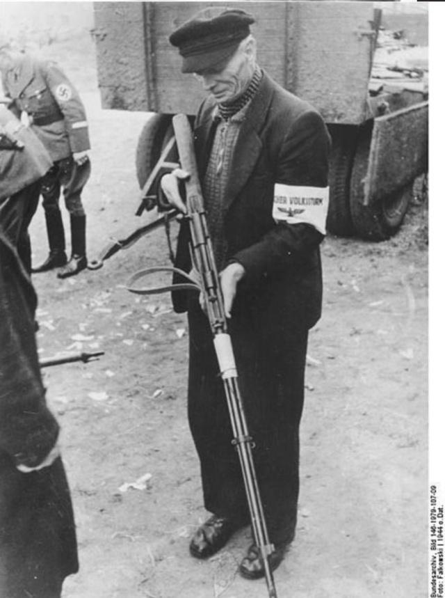 Dotation volkssturms armes pré 1890. Volks_10
