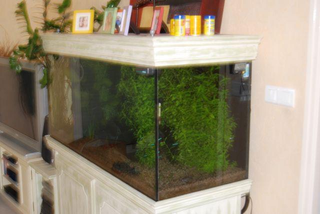 aquarium complet de 400litres Batter11