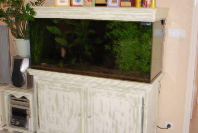 aquarium complet de 400litres Batter12