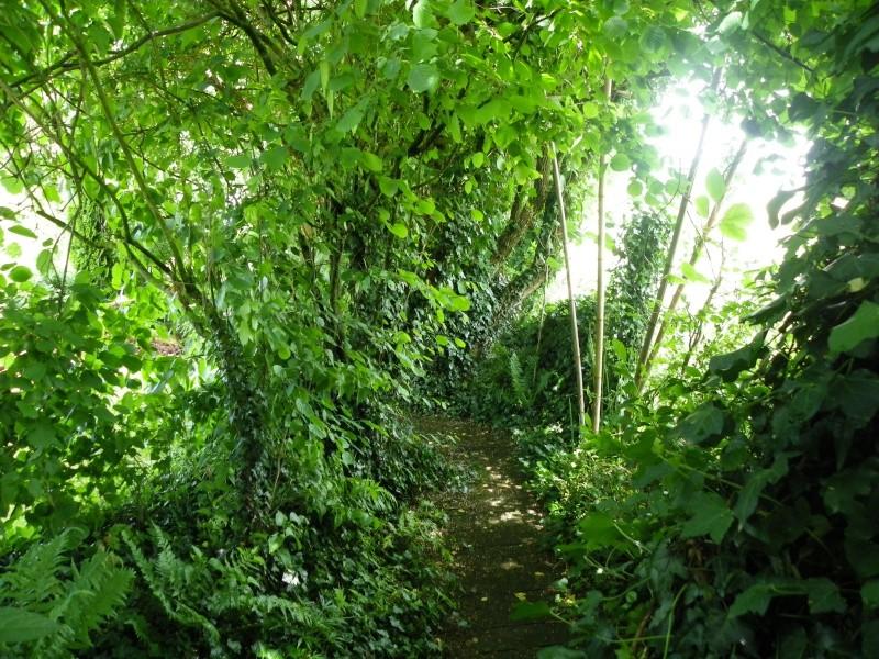 Les Rendez-vous Au Jardin le 5, 6 et 7 juin 2009 Imgp0111