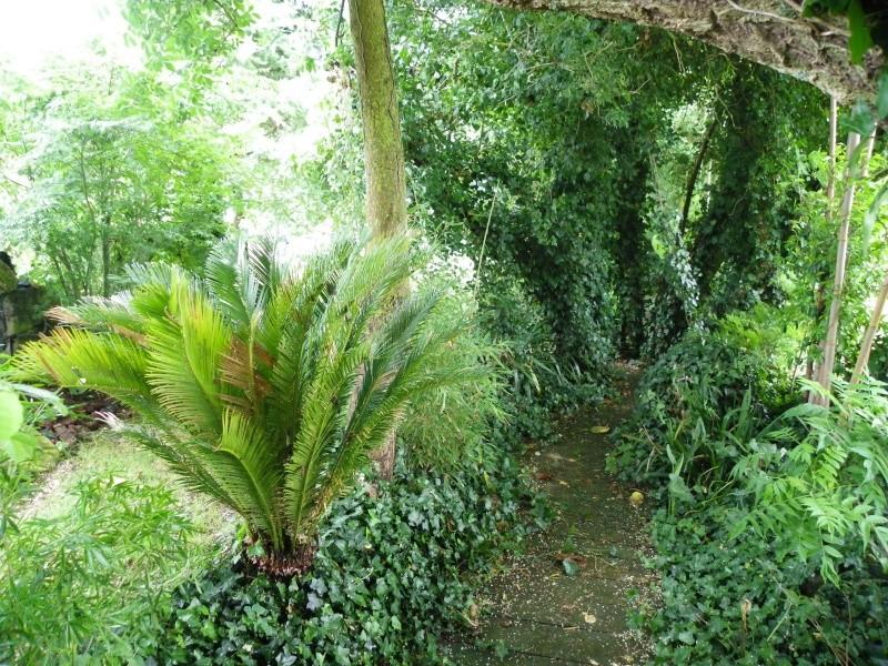 Les Rendez-vous Au Jardin le 5, 6 et 7 juin 2009 Imgp0112