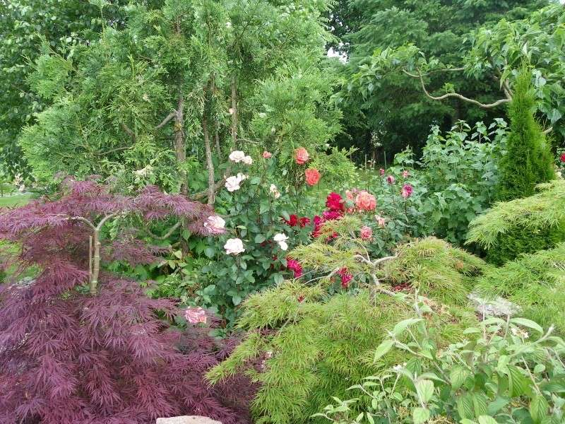 Les Rendez-vous Au Jardin le 5, 6 et 7 juin 2009 Imgp0120