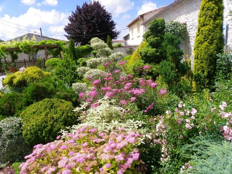 Les Rendez-vous Au Jardin le 5, 6 et 7 juin 2009 Imgp0146