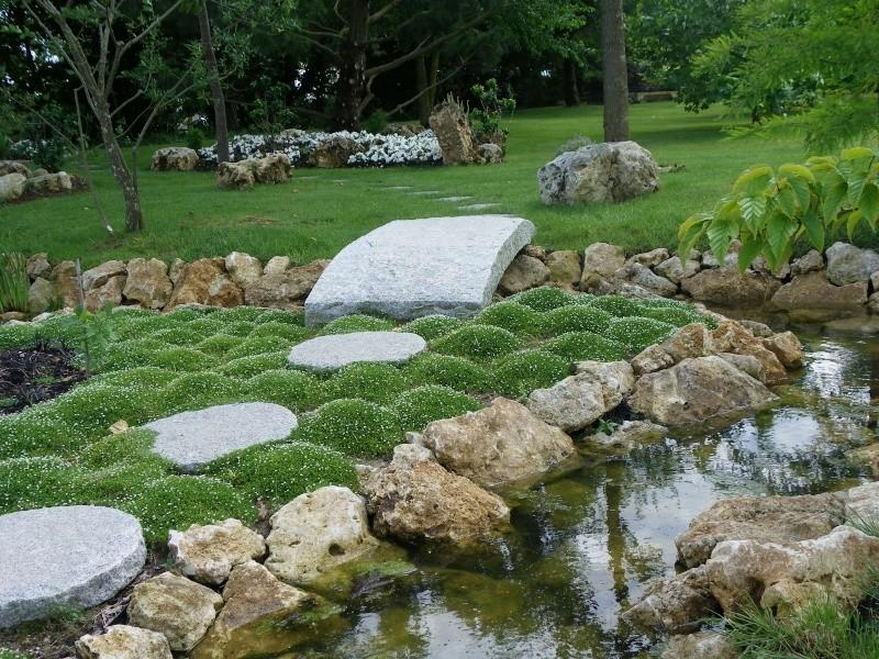 Les Rendez-vous Au Jardin le 5, 6 et 7 juin 2009 Imgp0213