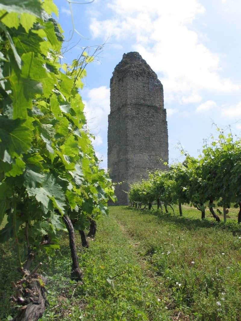 La tour de Pirelonge Photo_10