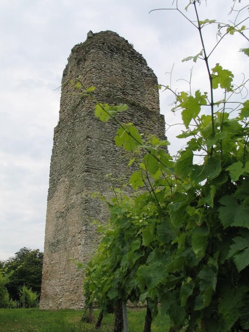 La tour de Pirelonge Photo_11