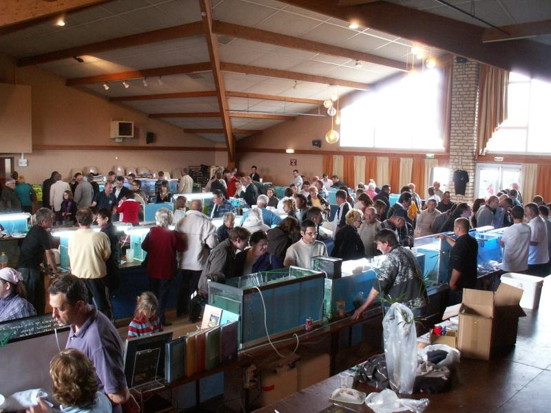 Bourse aquarophile Arvert dimanche 5 avril 2009 Pict0098