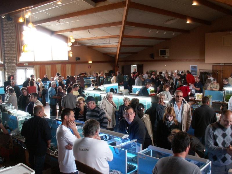 Bourse aquarophile Arvert dimanche 5 avril 2009 Pict0099