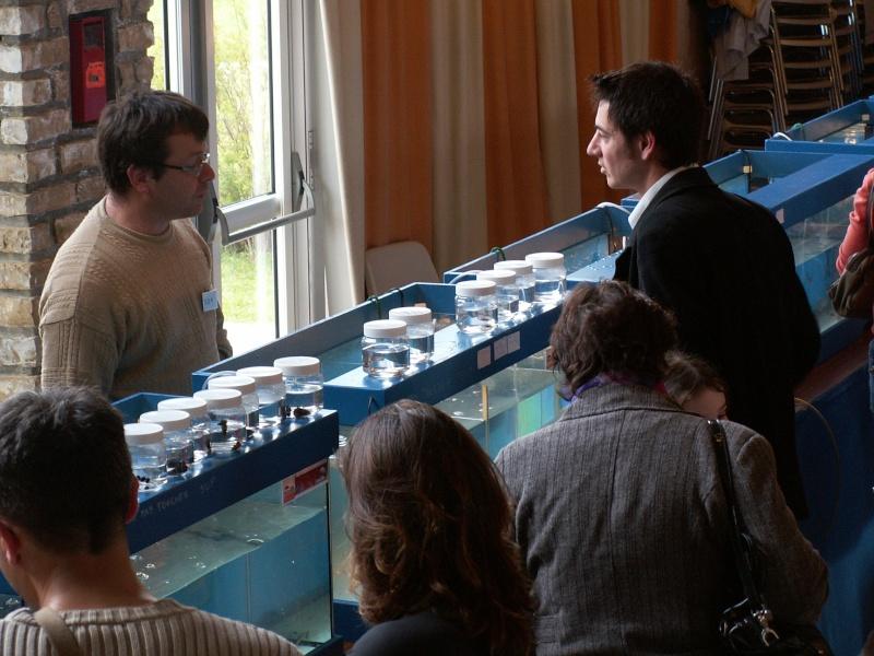 Bourse aquarophile Arvert dimanche 5 avril 2009 Pict0149