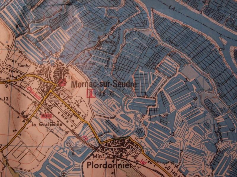 Mornac sur Seudre Pict0320