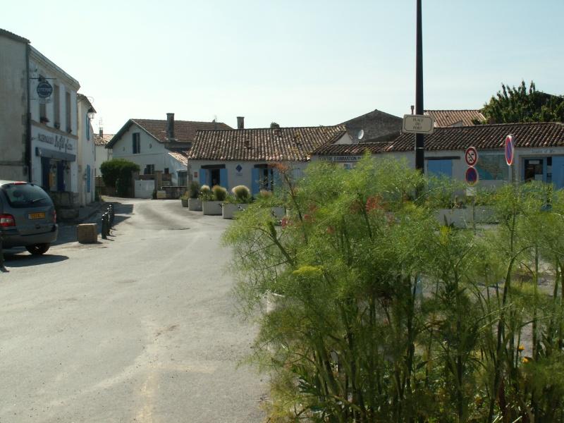 Mornac sur Seudre Pict0371