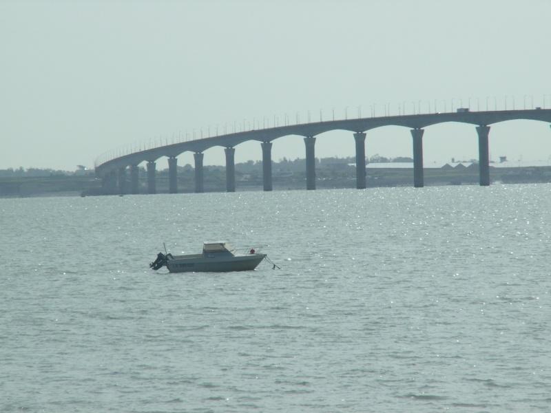 Le pont de l'île de Ré Pict0481