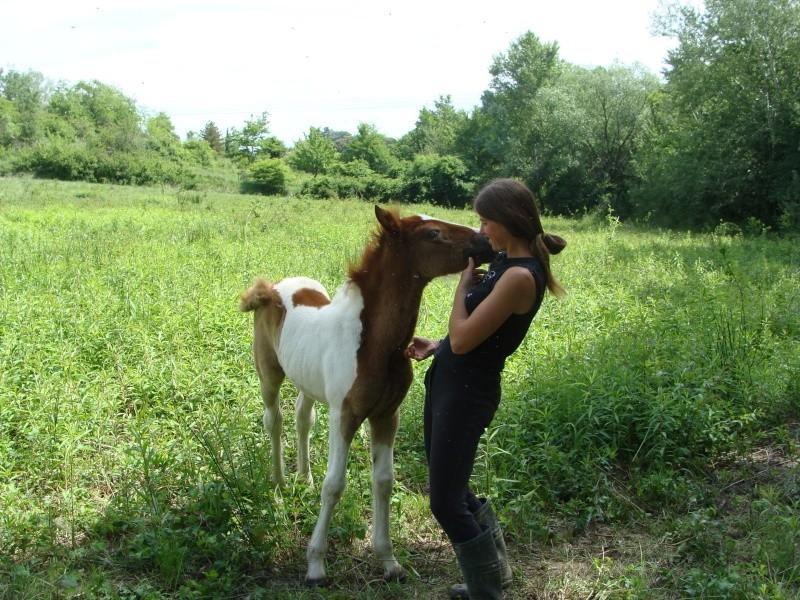 4 CB... Valkyrie, 1er bébé à lucky farm Dsc01411
