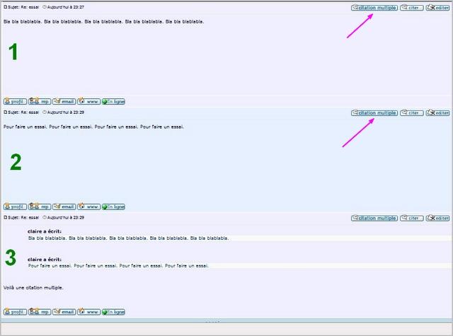 Nouvelle fonction citations multiples Citati10