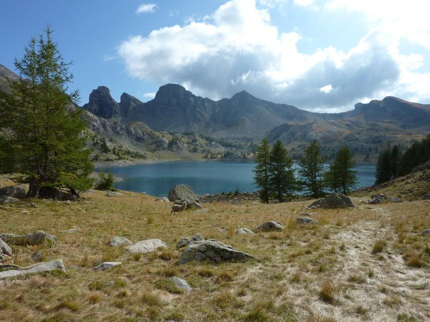 Lac d'Allos - Mont Pelat P1000028