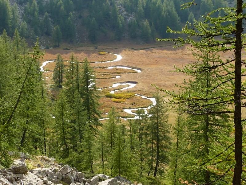 Lac d'Allos - Mont Pelat P1000114