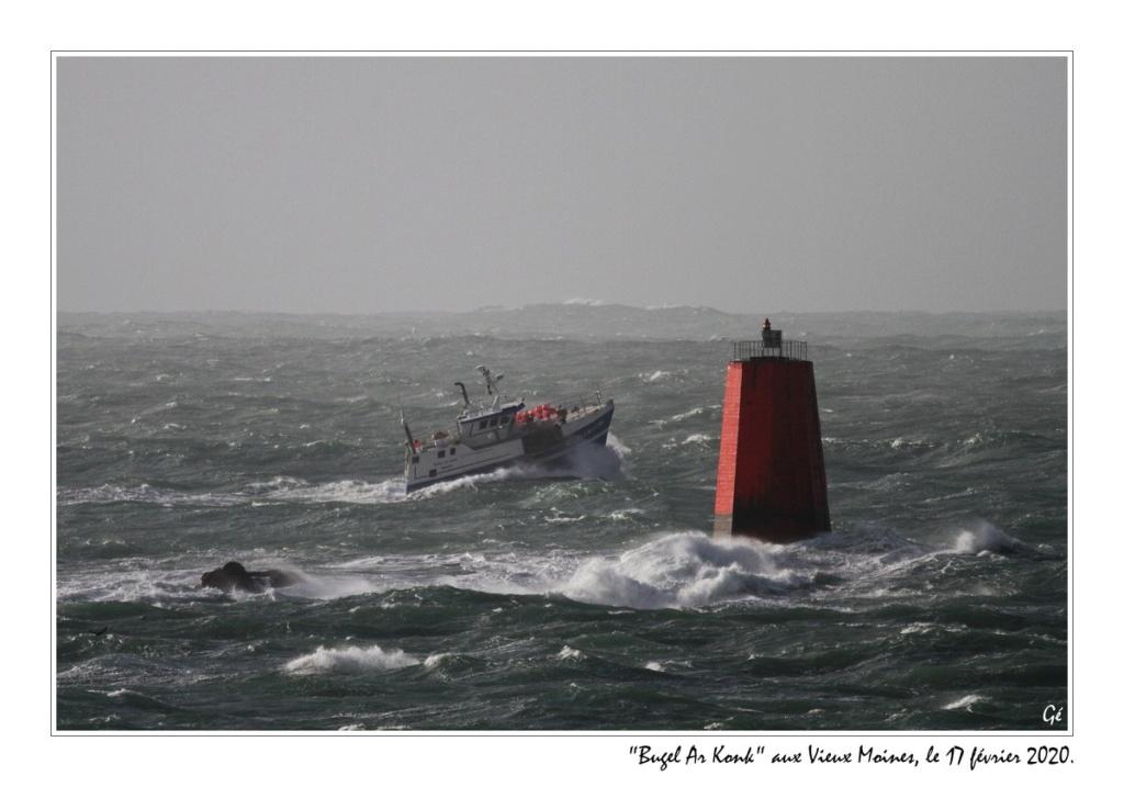 [VIE DES PORTS] Quelques bateaux de pêche (sur nos côtes Françaises) - Page 3 20200216