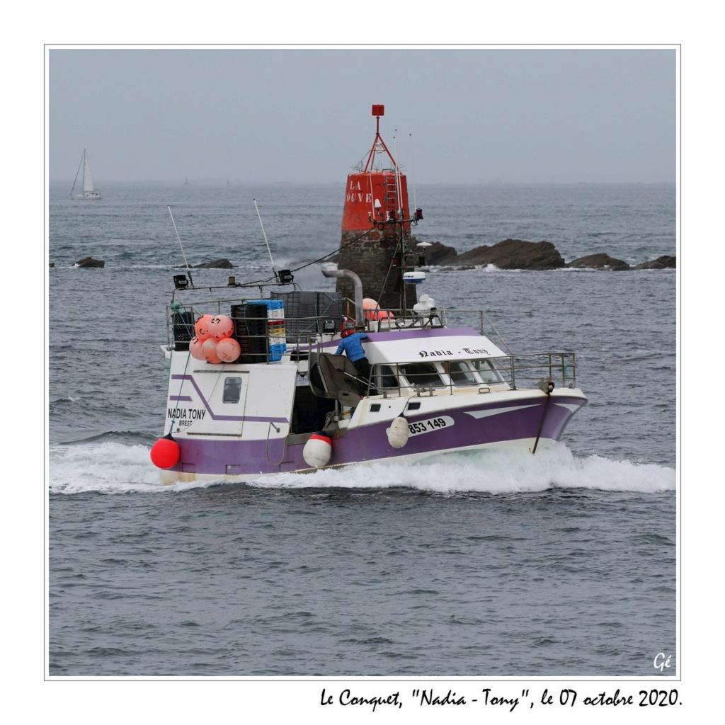 [VIE DES PORTS] Quelques bateaux de pêche (sur nos côtes Françaises) - Page 6 20201014