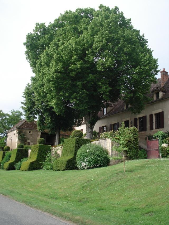 Apremont sur Allier , fête des plantes 511_1129