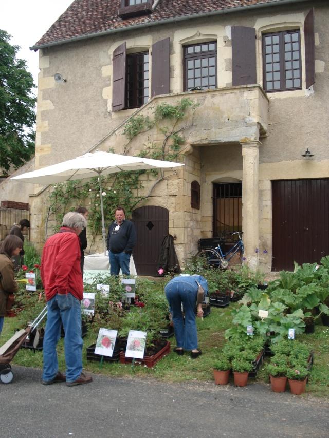Apremont sur Allier , fête des plantes 511_1132