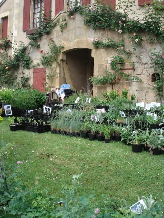 Apremont sur Allier , fête des plantes 511_1135