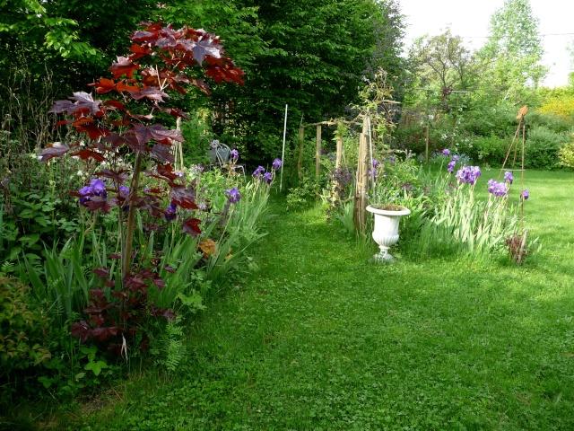 vlà le printemps chez Michelle - Page 3 511_1176