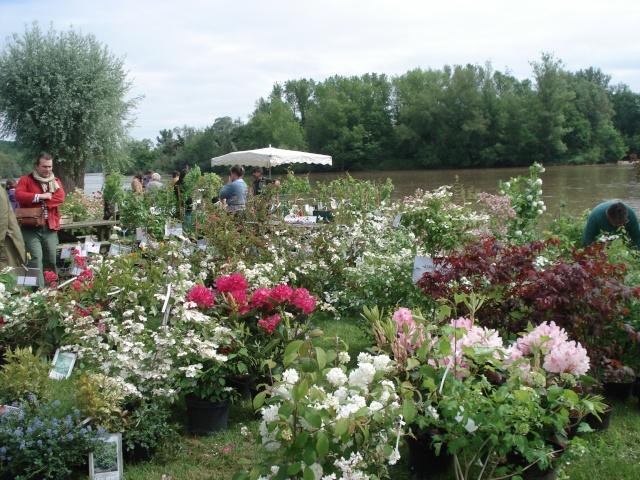 Apremont sur Allier , fête des plantes 511_1214