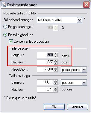 paint*?tid=8cb3c32870e2ab7a183987e9a65f6e34 - TUTO : Comment réduire une photo pour le forum avec paint.net Paintn15