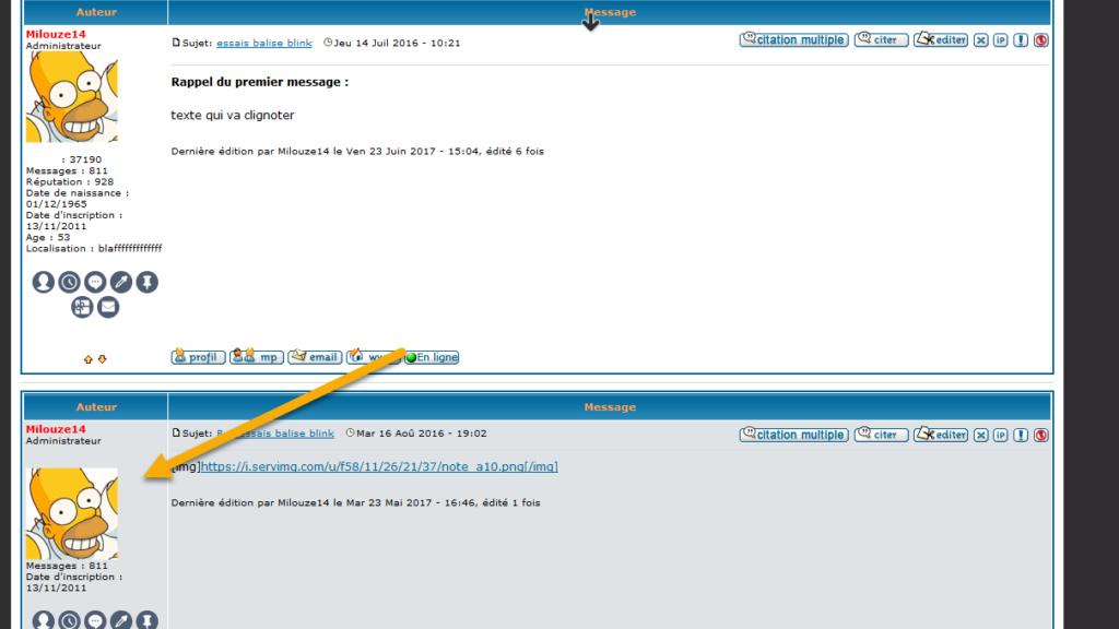 [PHPBB2]Afficher l'avatar du membre dés lors que l'on affiche le premier message 246