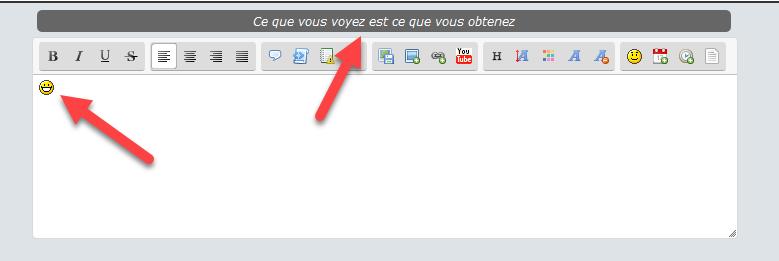 [TOUTES VERSIONS]Afficher au dessus de l'éditeur l'information si mode Wysiwyg ou texte 254