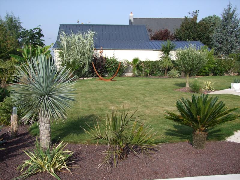 Le jardin de Stéro Dscf3313