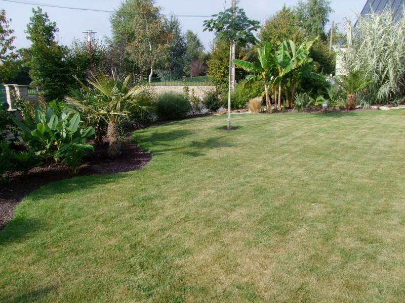 Le jardin de Stéro Dscf3316