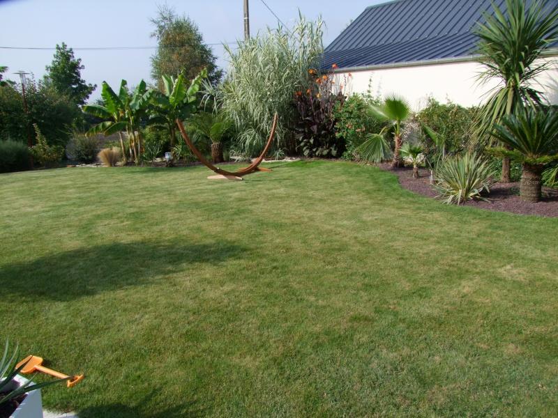 Le jardin de Stéro Dscf3325