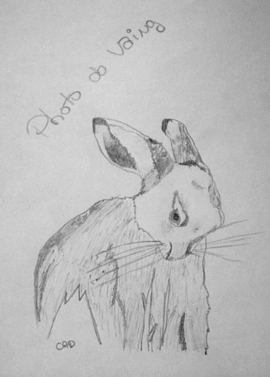 Les dessins...De Poussin ! Dessin16