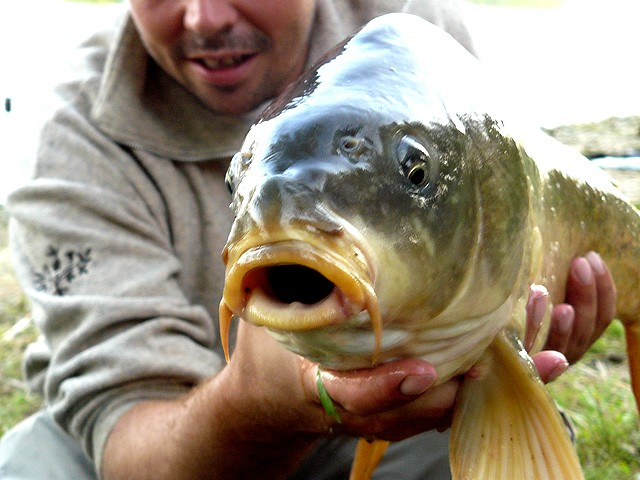 Rencontre Traditions Pêche 2009 !!!!!!!! P1080655