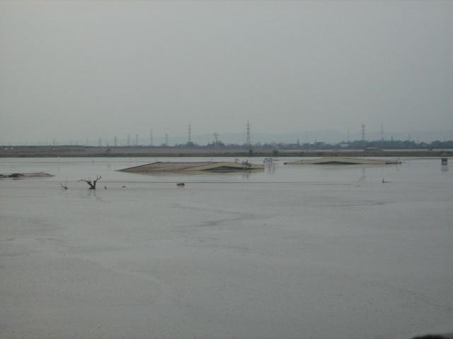 Le Lusi Mud Vulcano (Java - Indonésie) Img_4817