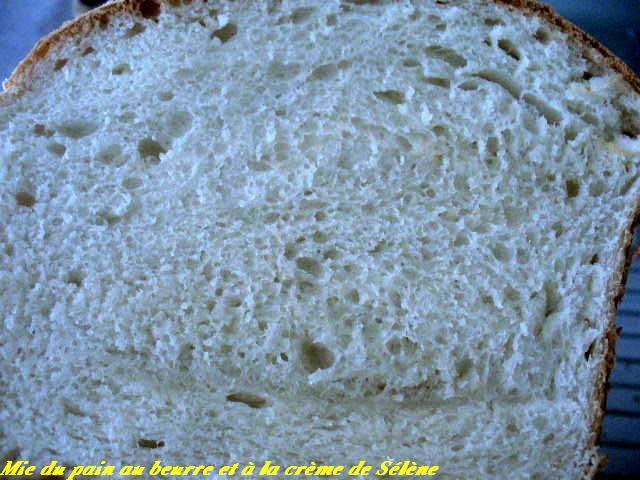 Pain au beurre et à la crème de Sélène ( + photo) P1100118