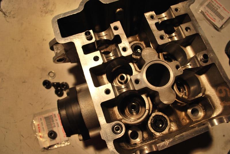 Z1000 (preparee) et KLX 650 SM (en prepa) - Page 11 Dsc_0032