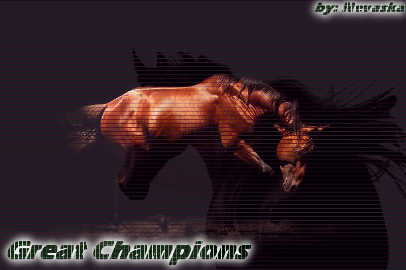 Centro Hípico Great Champions