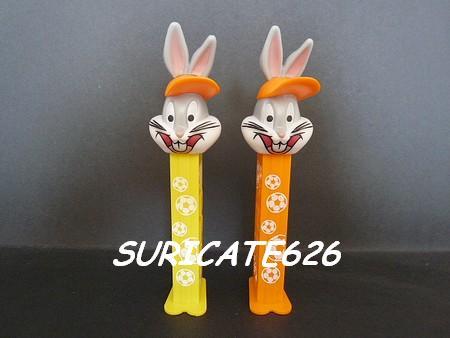 Suricate recherche Bunny_11