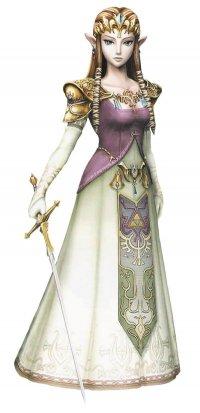 Groupe zelda twilight princess JE Sud 2010 N4209610
