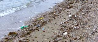Δάσκαλε, η παραλία σου θέλει καθάρισμα Hpim9122