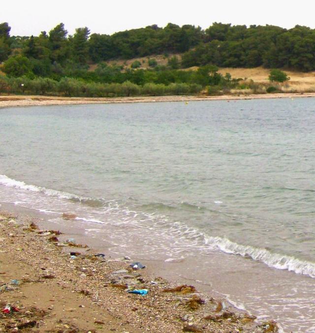 Δάσκαλε, η παραλία σου θέλει καθάρισμα Hpim9123